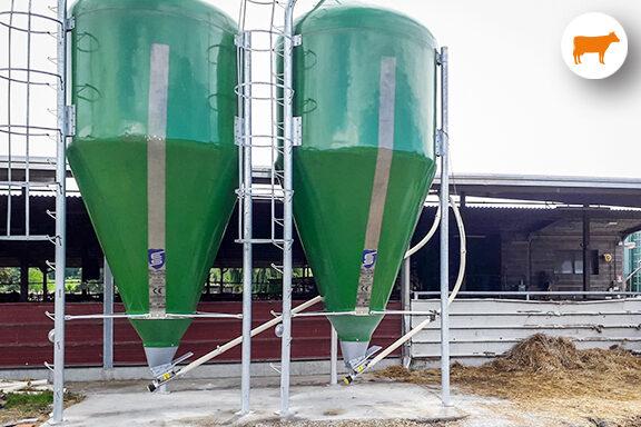 Impianto coclee flessibili per allevamento bovino
