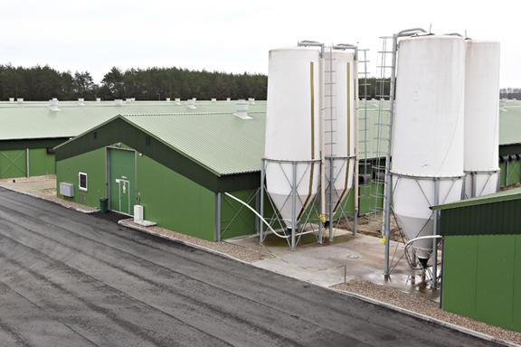 impianti silos millennium europeo